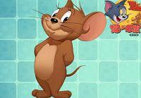 猫和老鼠:一级细心对猫的影响有多大?测试结果出乎意外!