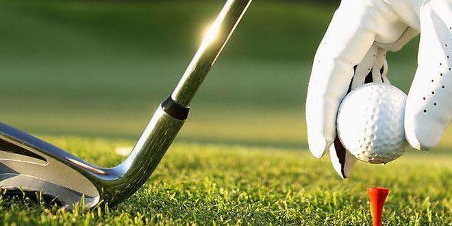高尔夫app合集